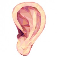 10 Amazing Facts About Hearing